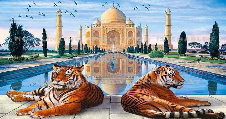 6 Nights Golden Triangle Tour with Tigers